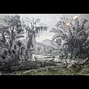 German Engraving - Jungle Landscape In Venezuela's San Cristobal