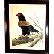 "REDUCED John Ruthven (American 1924-) ""Bateleur Eagle"" Double Signed Limited Edition"