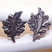 Vintage STERLING SILVER Earrings - Oak Leaf Fronts!