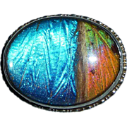 Art Deco Sterling Multi Color Butterfly Wing Pin