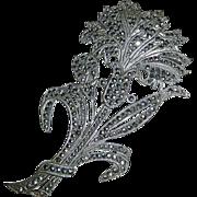 Elegant Floral Sterling & Marcasite Cornflower Pin