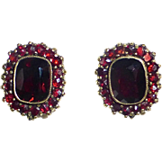 Gold Filled Genuine Garnet Cluster Clip Earrings