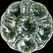 Antique Majolica Oyster Plate Mottled Glaze - After a Minton Design