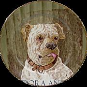 Antique Cauldon Dog Plate. Portrait of a Bull Mastiff. England c1905-1910