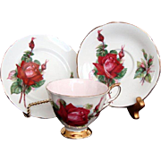 "Vintage Paragon Trio ""Royal Gala"" - Six World Famous Roses Series - Harry Wheatcroft"