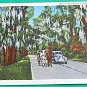 Vintage Postcard Mississippi's Modern Highways