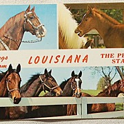 Vintage Post Card Greetings From Louisiana The Pelican State