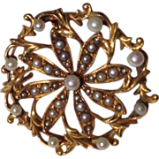 REDUCED Victorian 14 K Gold & Seed Pearl Starburst Pendant Brooch