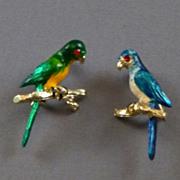 Vintage Parrot Pins