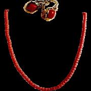 Delightful Coral Earrings 14K Gold ca. 1920