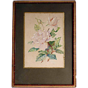 Delicate Roses Water Color ca. 1900