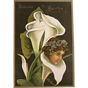 1885 Victorian Book Violet among the Lilies Book L. Clarkson Color Chromos Romantic Floral Lad