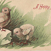 Easter Post Card with  Chicks