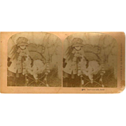 1882 Kilburn Stereo View Young Girl with her Dog
