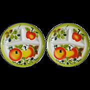 SALE Set of 2 Vintage Graniteware / Enamelware Divided Plates