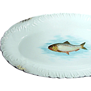 SALE Outstanding Large Austrian FISH PLATTER by Bawo 'n Dotter w/ Embossed Border c.1898