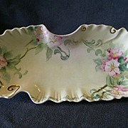 Elite Limoges Hand Painted Celery/Relish Tray w/Apple Blossom Decoration