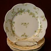 "Set of 4 Haviland & Co. Limoges ""Green & Pink Floral"" Bread & Butter Plates - Schlei"