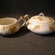"""Charles Haviland & Co. Limoges - """"Jewel Tea - Autumn Leaf"""" Sugar & Creamer Set"""