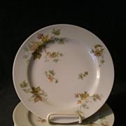 "Set of 4 Charles Haviland & Co. Limoges - ""Jewel Tea - Autumn Leaf"" Salad/Dessert Pl"