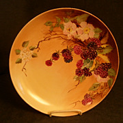 E S Prussia Hand Painted Plate w/Ripening Blackberry Fruit & Flowers Motif