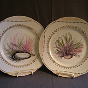 Pair of Haviland & Co. Limoges Hand Painted Cabinet Plates w/Sea-life, Vegetation & Coral