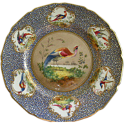 Royal Doulton H.P. 'Birds of Paradise' Cabinet Plate (4 of 6) Signed 'E Percy'