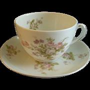PH Leonard, Vienna, Austria, Porcelain Set of 6 Cups & Saucers w/Pink & White Rose Motif
