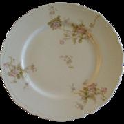 PH Leonard, Vienna, Austria, Porcelain Set of 10 Salad/Dessert Plates w/Pink & White Rose ...