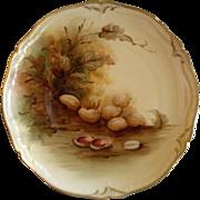 Pickard Studio Hand Painted Cabinet Plate w/Naturalistic Peanuts Motif
