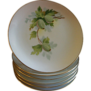 Set of 12 Austria China Hand Painted B&B/Dessert Plates w/Gooseberry Motif