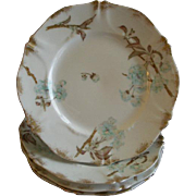 Set of 4 Theodore Haviland Luncheon Plates - St Cloud Series w/Floral Motif - Schleiger #116 .