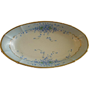 "German Porcelain Hand Painted ""Forget-Me-Not"" Pattern Oval Relish Dish"