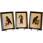 "Set of 3 Framed Bernhardt Wall ""Teddy Bear - Seven Days of the Week"" Postcards"