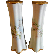 Contemporary Hand Painted Salt & Pepper Set Decorated with Wild Roses and Dogwood Blossoms