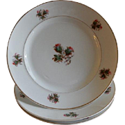 "Set of 3 - 1870's Charles Field Haviland ""Moss Rose"" Pattern Dinner Plates"
