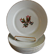 "Set of 6 - 1880's Charles Haviland & Co. Limoges ""Moss Rose"" Pattern Salad/Desert Pl"
