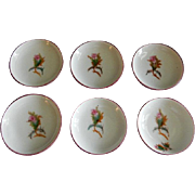 "Set of 6 - 1880's Charles Haviland & Co. Limoges ""Moss Rose"" Pattern Individual Butt"