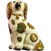 REDUCED Staffordshire Pottery  Pearlware Dog Collar King Charles Spaniel Antique.