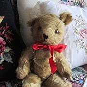 REDUCED Antique Mohair Bear