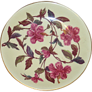 SALE Antique Royal Worcester Hand Painted 1886 Botanic Plate