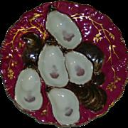 SALE Haviland Limoges Claret Turkey Oyster Plate