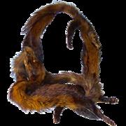 REDUCED Vintage 1940's Fox Fur Stole