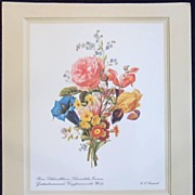 Flower Print by C. F. Friedrich