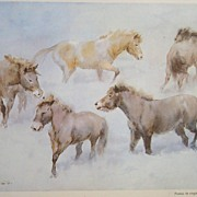 "Horse Vintage Watercolor Wolfgang Tritt  ""Ponies in Virginal Snow"""