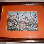 Framed Pheasants Lithograph Birds