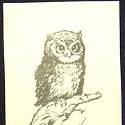 Owl  Black and White Ink