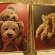 Bear Prints Framed in Gold Frames