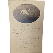 SALE PENDING 1907 Real Photo Postcard with Obituary for Nick the Dog