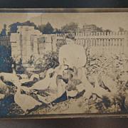 Little Brownie Souvenir Postcard